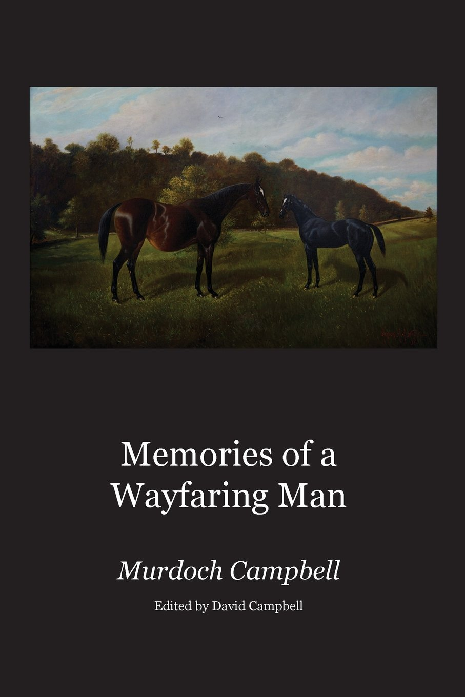 Image for Memories of a Wayfaring Man